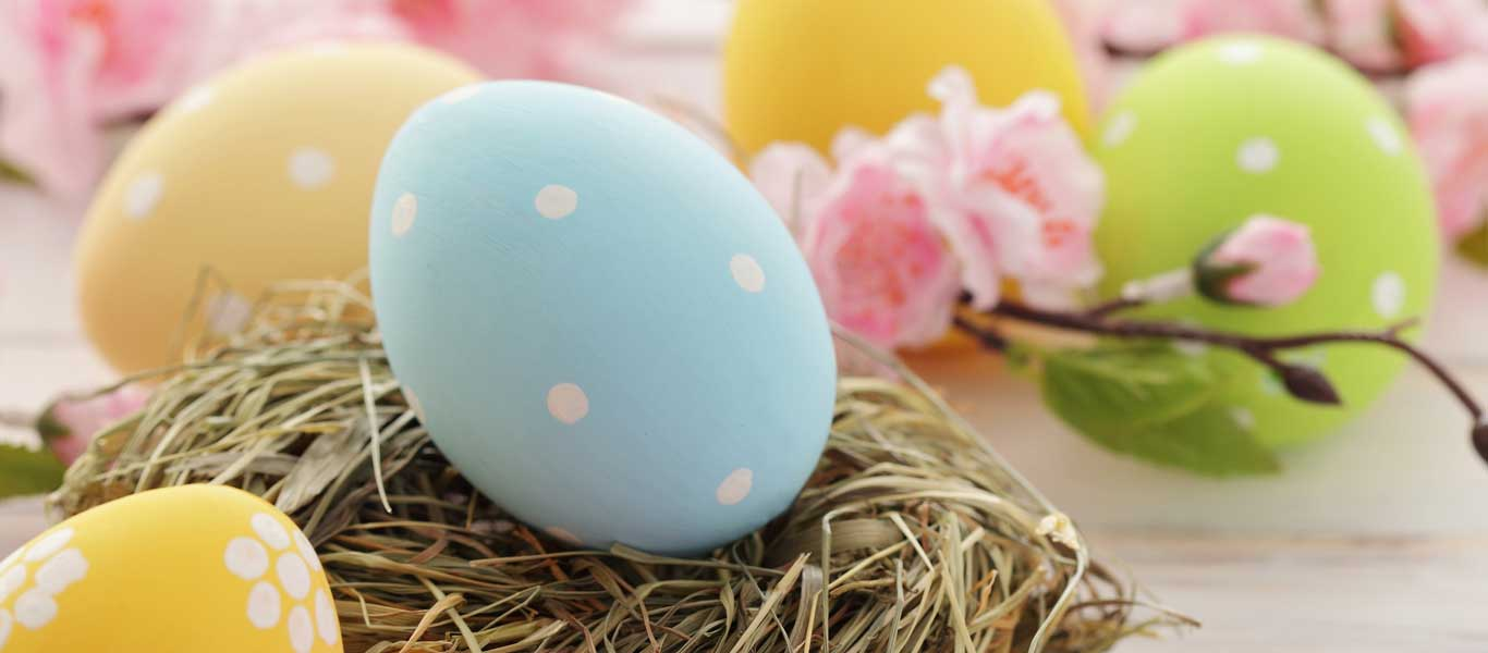 Easter Brunch 2017 Photo Album - The Miracle of Easter